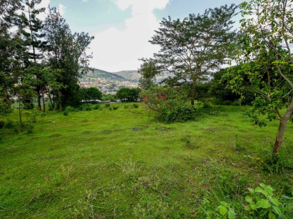 19 05 03 7 Kigali Kinyinya Murama very large plot with big trees