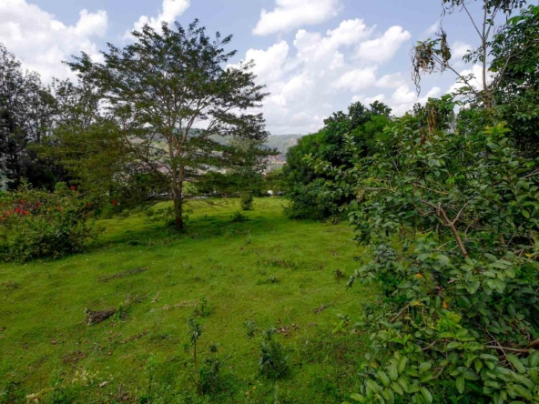 19 05 03 8 Kigali Kinyinya Murama large plot with trees 1