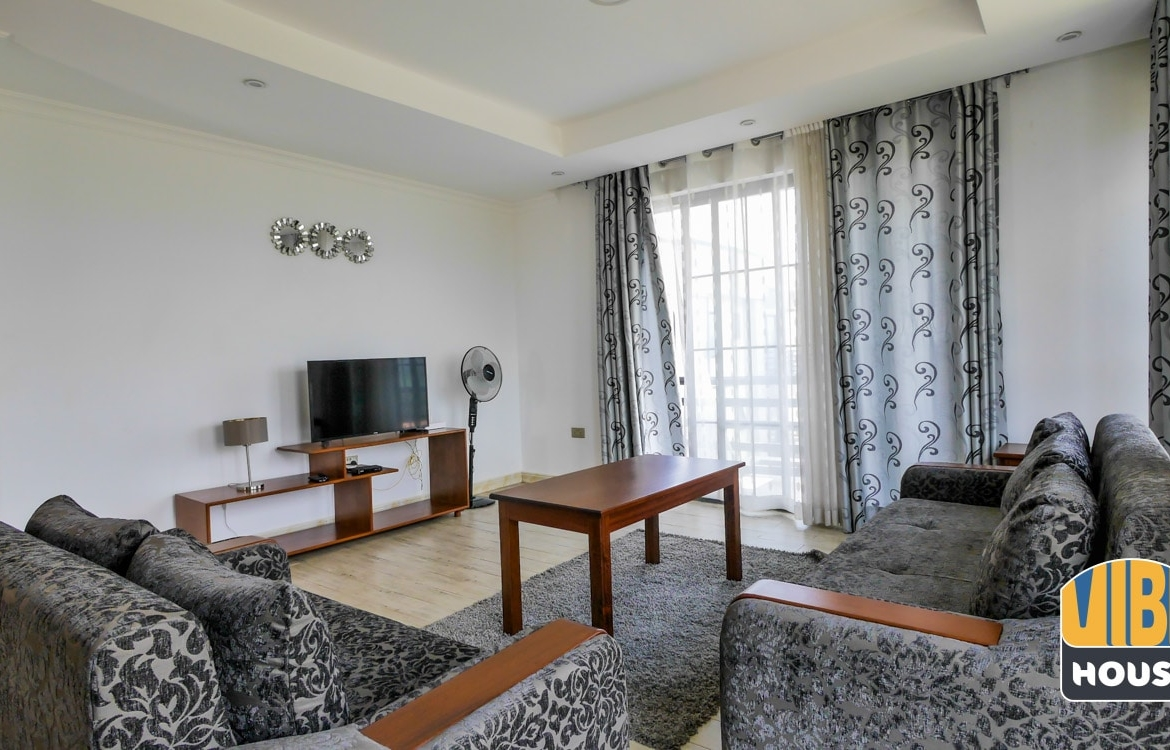 Furnished living room with flatscreen TV - Luxurious apartment for rent