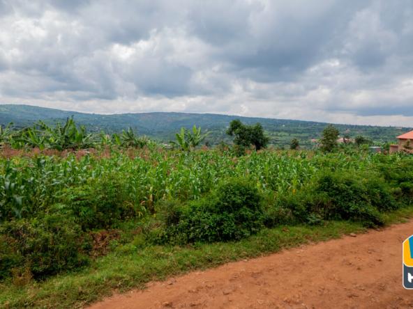 20 05 14 plot for sale in ndera rwanda 11 of 11